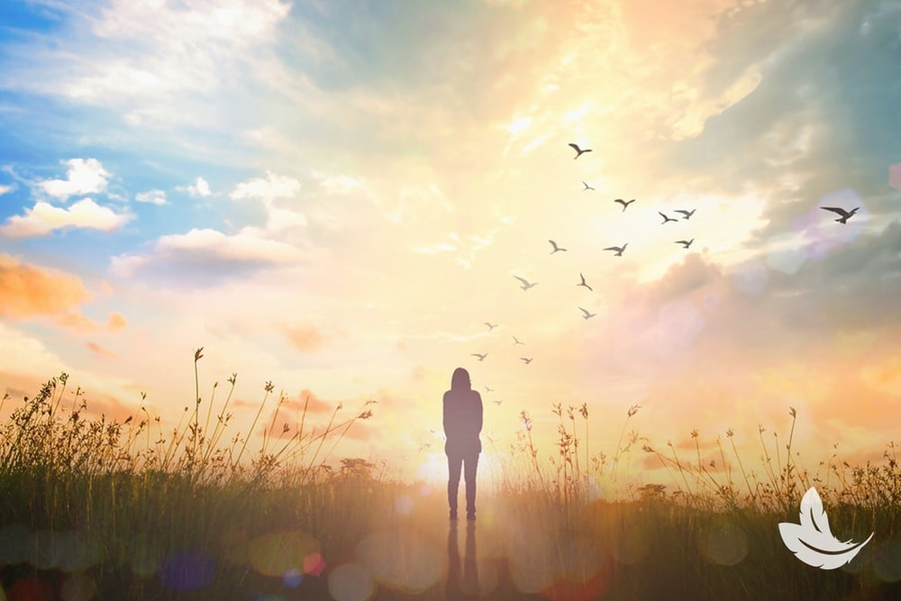 10 Things You Didn't Know about the Afterlife
